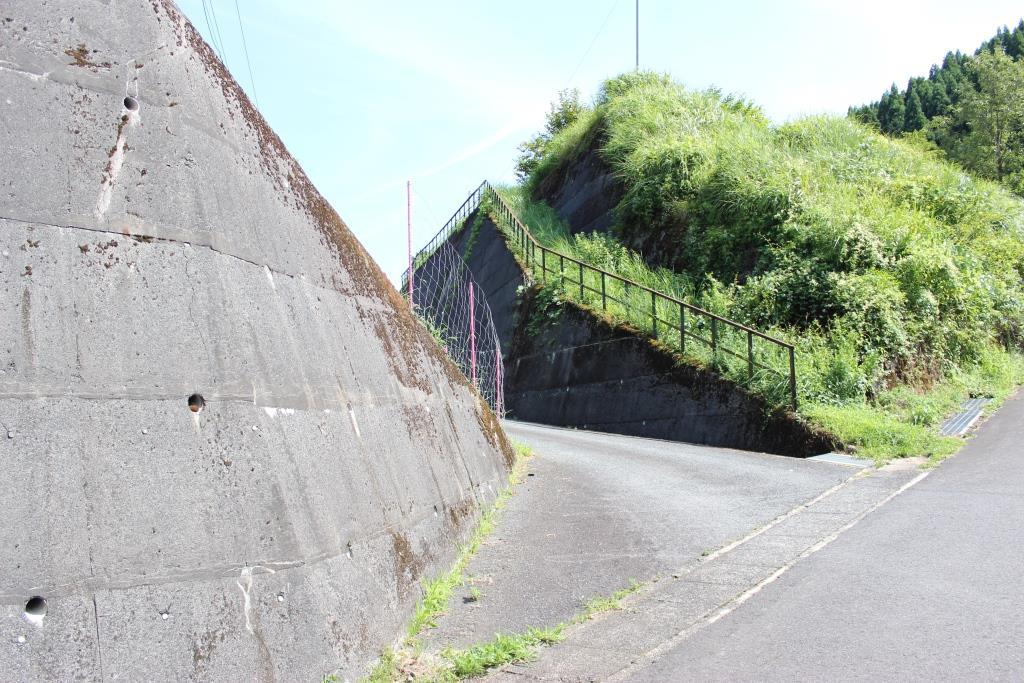 koiyamagataeki7
