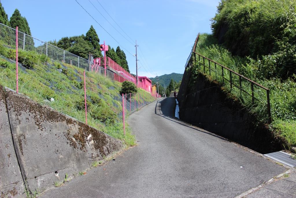 koiyamagataeki8