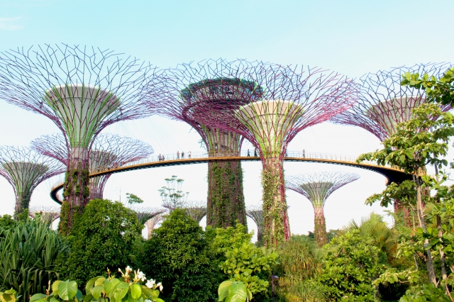 singapore_sightseeing3